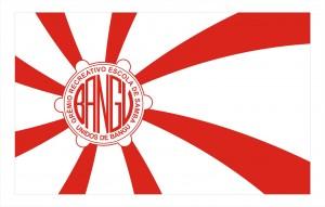 BANDEIRA UNIDOS DE BANGU